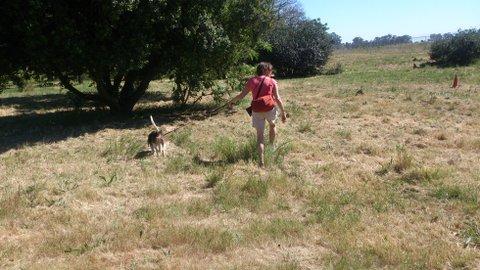 Treasure Hunt at the Paarl Arboretum