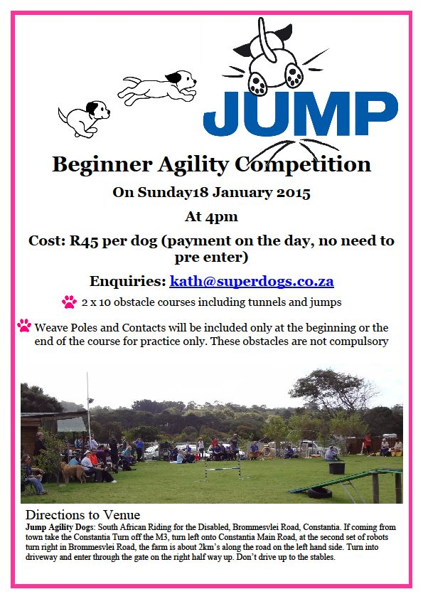 Jump Beginner Agility competition - January 2015